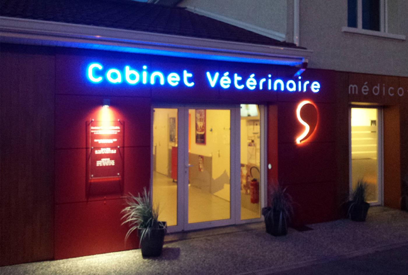 rénovation façade vétérinaire lyon
